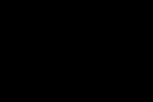 black FMS logo